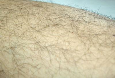 毛は剃ると本当にその後濃くなるのか?
