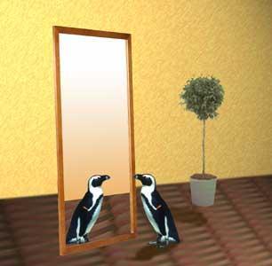 鏡見てギョ!