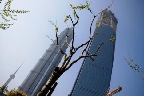 上海SMAP騒動は、寝耳に水