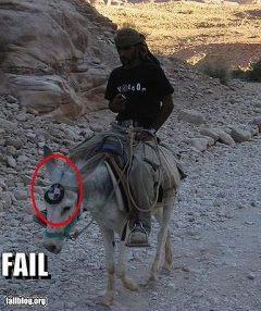 fail 7
