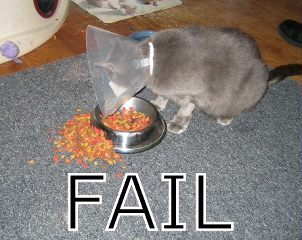 fail 16